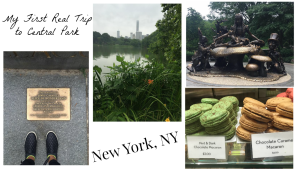 my-first-real-trip-to-central-park